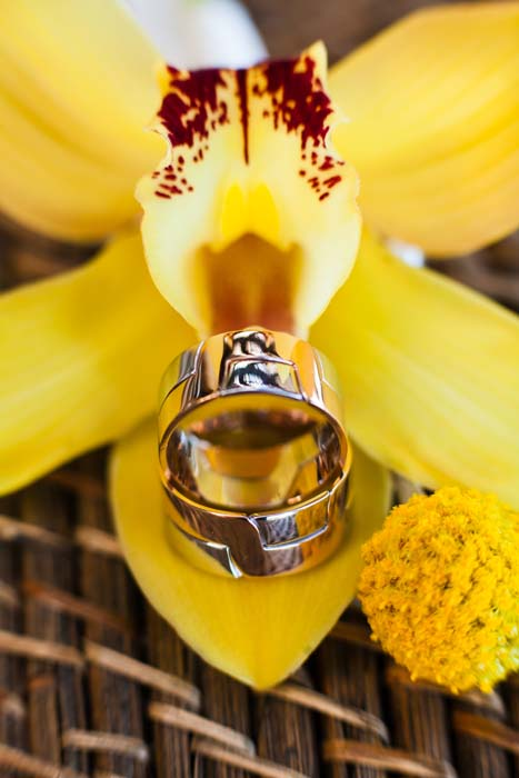 Wedding Rings in Yellow Flower - Del Cabo Weddings