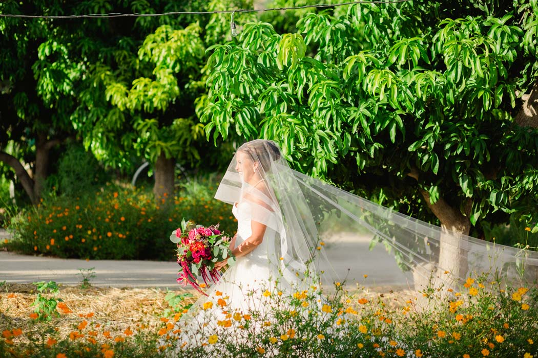 Sarah in her wedding dress behind a beautiful row of flowers in a garden at Cabo San Lucas in Baja California. - Sarah and Justice pic1